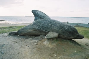 Driftwood Dolphin Sculpture by Paul Sivell